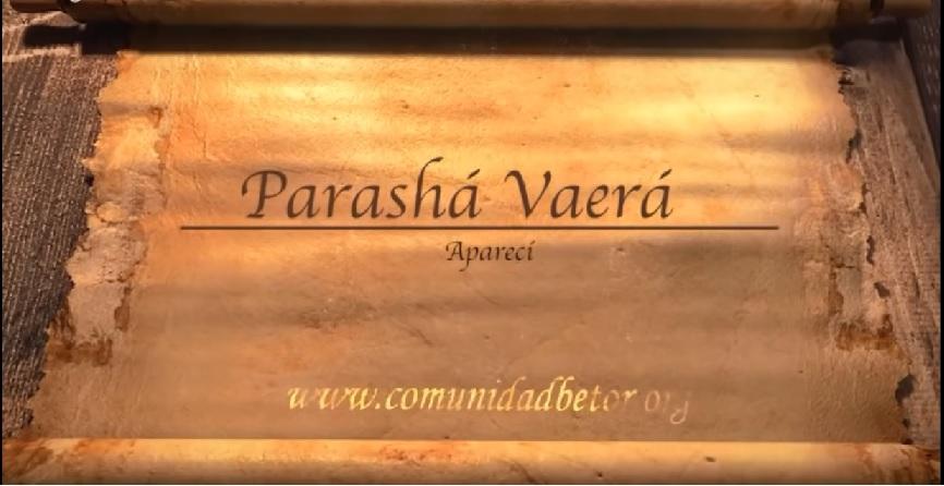 Parasha Vaera