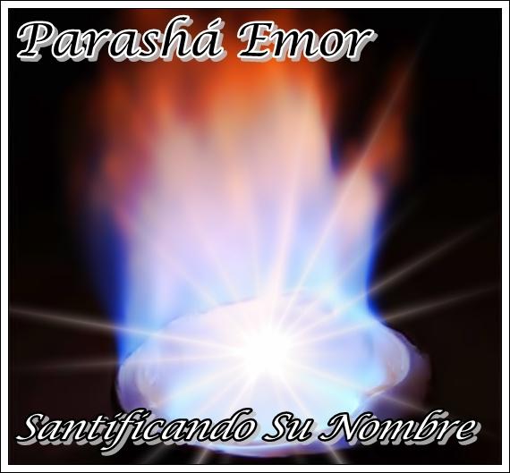 Parasha Emor